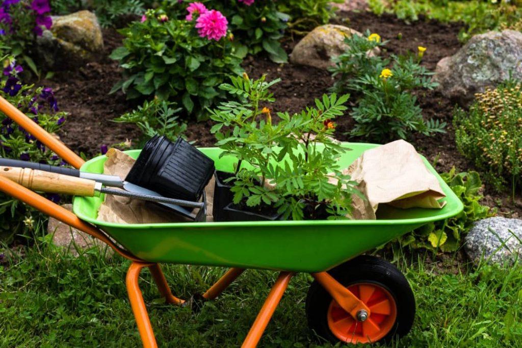 خدمات باغبانی شرکت سما پارسا